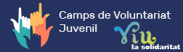 Camps de Voluntariat